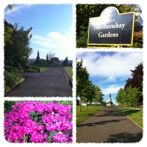 Took a summer walk in Northernhay Gardens before dinner